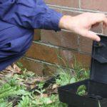 Eastern-Suburbs-Pest-Control